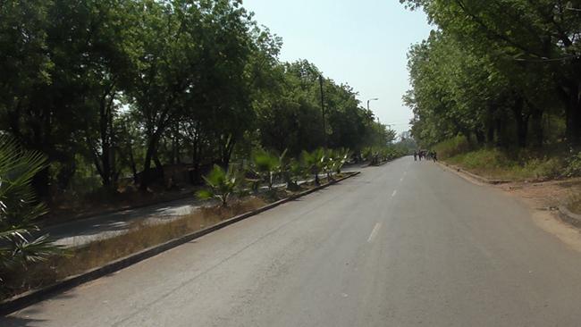 Gambella road